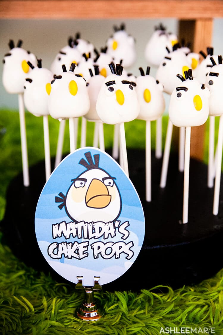angry bird party matilda cake pops