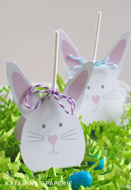 finished-bunny-lollipop-covers