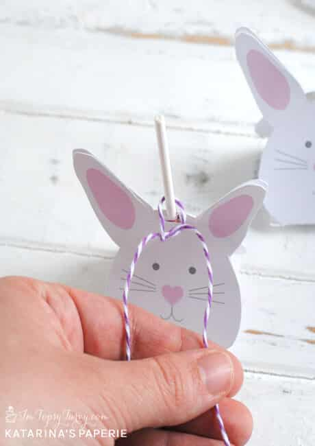 tie-bow-of-bunny-lollipop-cover