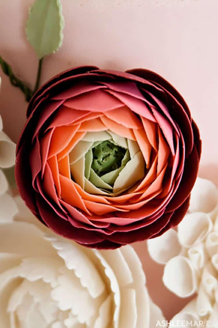 Save Gumpaste Ranunculus Tutorial Ashlee Marie