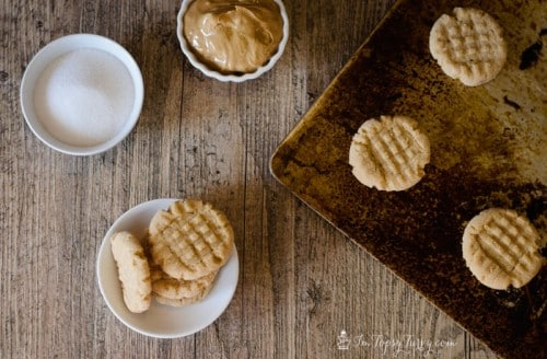 15 - Ashlee Marie - Peanut Butter Cookies