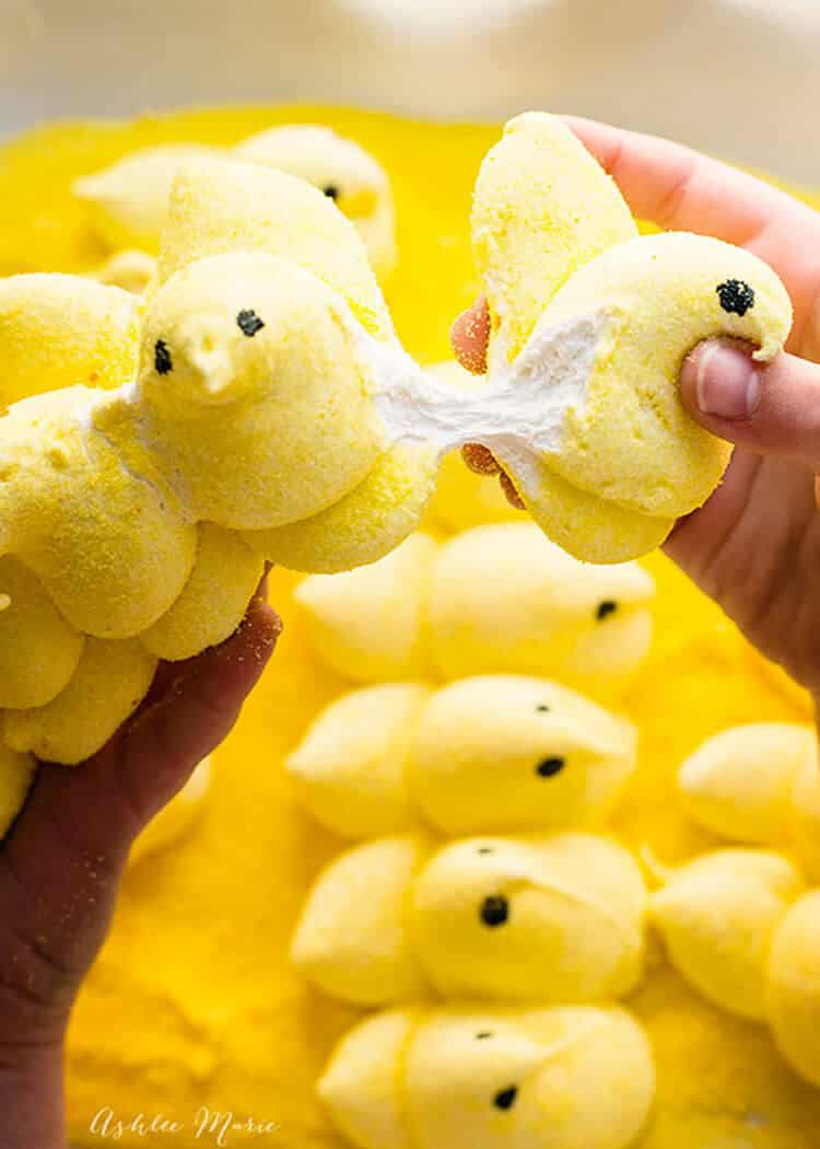 making homemade peeps is easier than you think - check out this recipe and full video tutorial