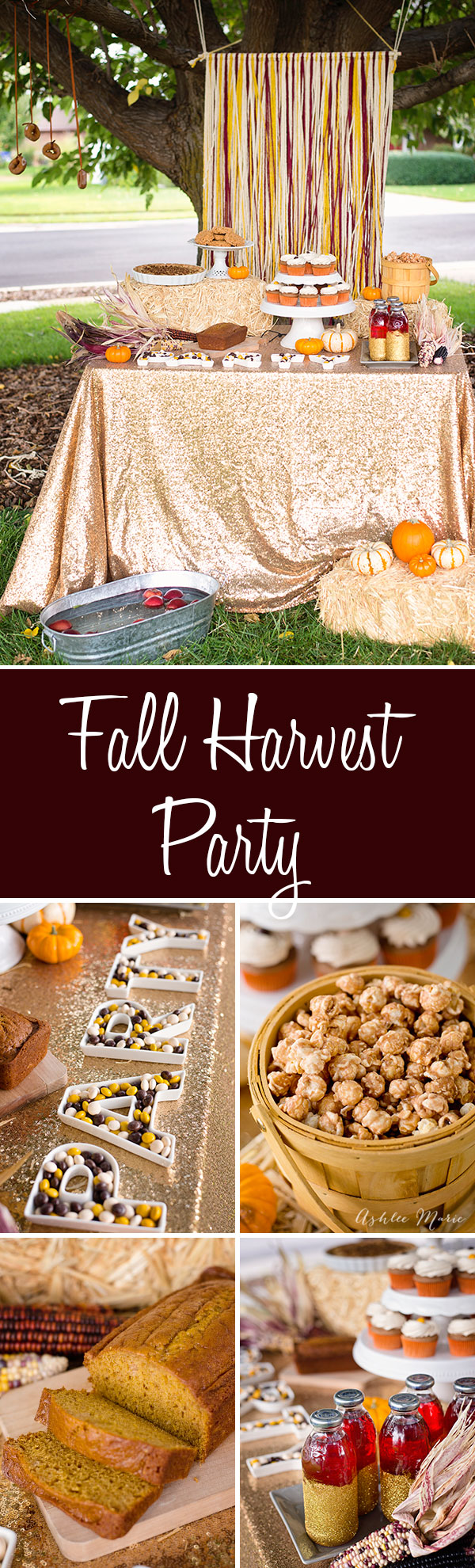 A Fall harvest party celebrating all things Fall, pumpkin bread, apple pie, cinnamon toast popcorn, pecan pie M&M's® cupcakes and more. Easy to put together with decorating tips and activities