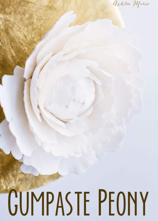 gumpaste peony video tutorial