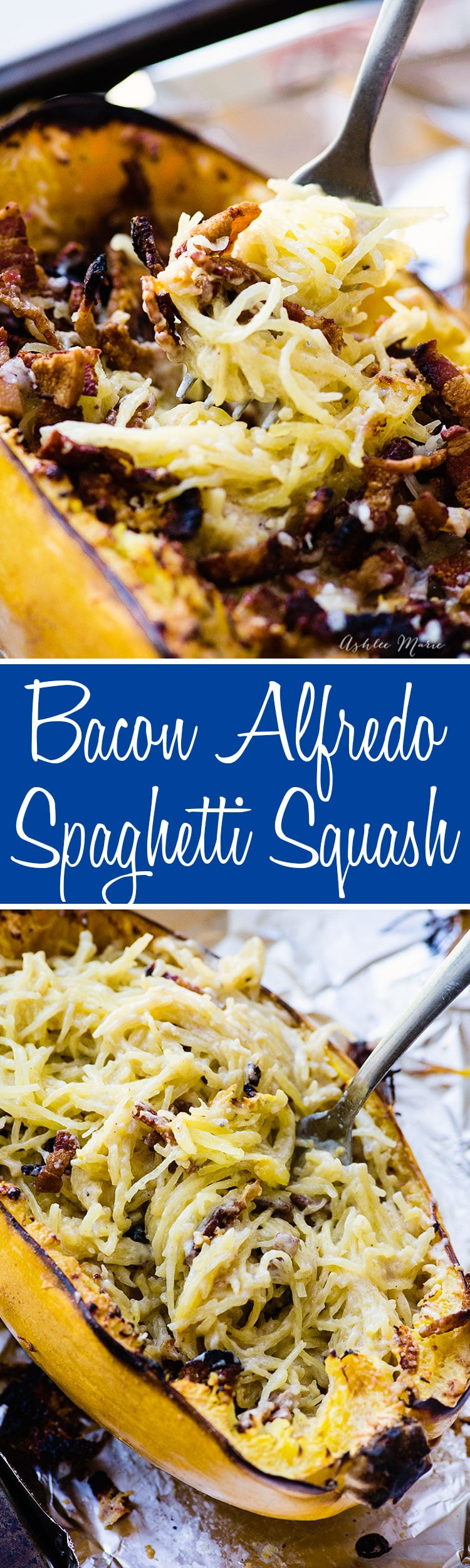 spaghetti squash is a wonderful flavor and base for bacon alfredo