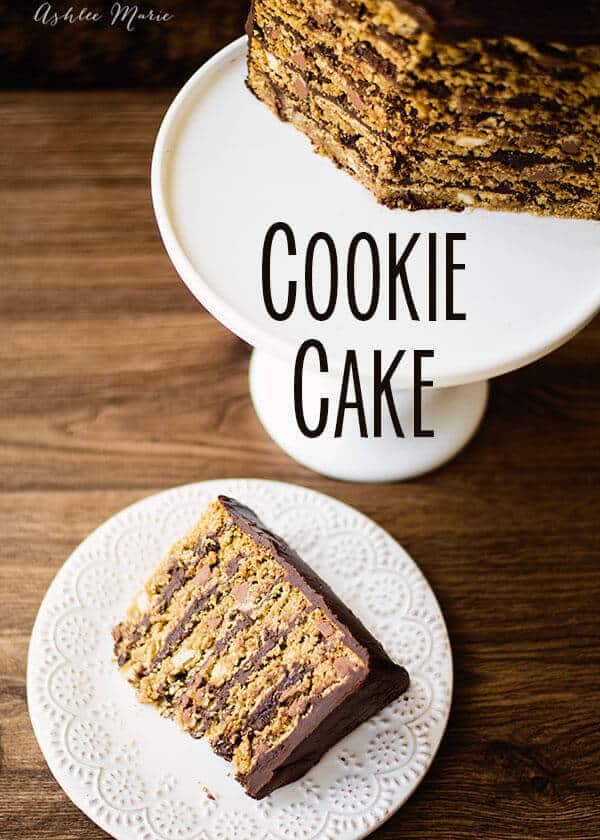 cookie cakes are so easy to make and oh so delicious this one is made with oatmeal chocolate chip cookies