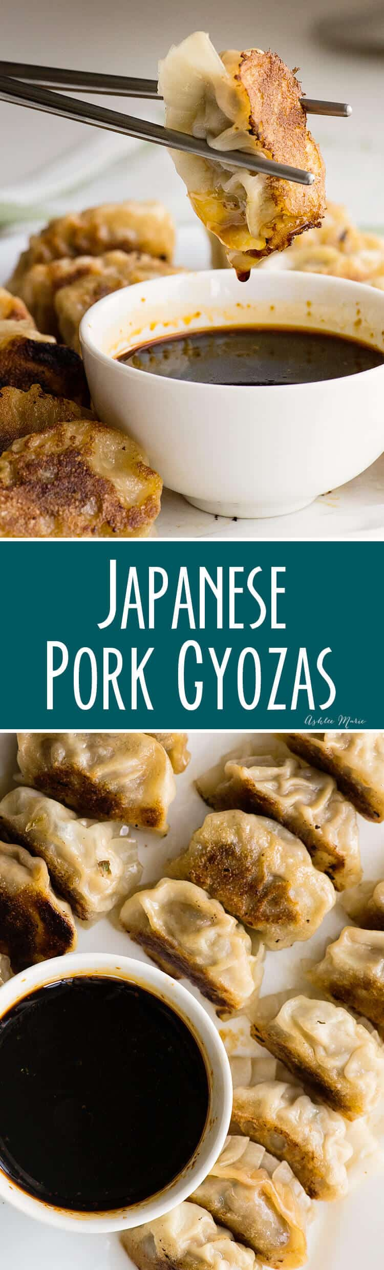 homemade pork and cabbage japanese gyoza recipe and video tutorial - these homemade pan fried dumplings are easy and delicious