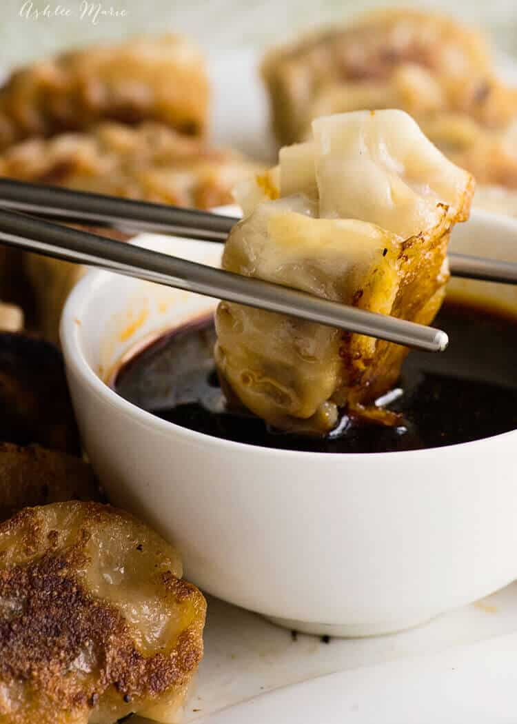 it doesn't get much better than these homemade japanese pork and cabbage gyozas - video tutorial