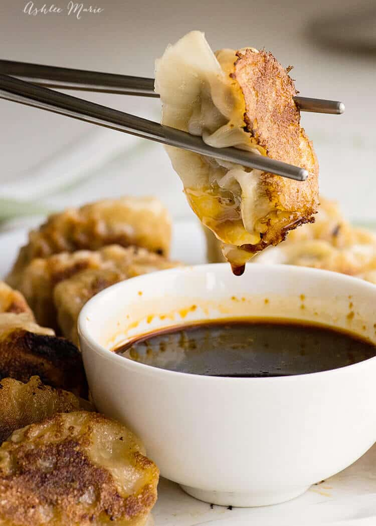 these homemade pan fried Japanese pork gyozas are AMAZING - recipe and video tutorial