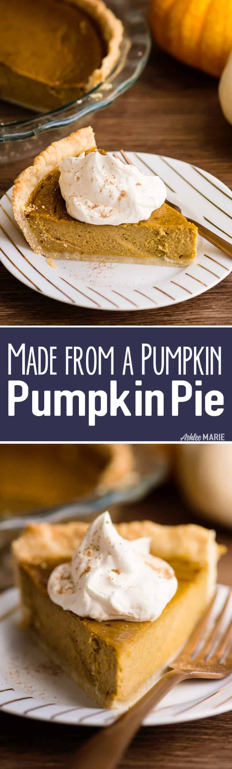 made from a pumpkin - from scratch pumpkin pie recipe and video tutorial