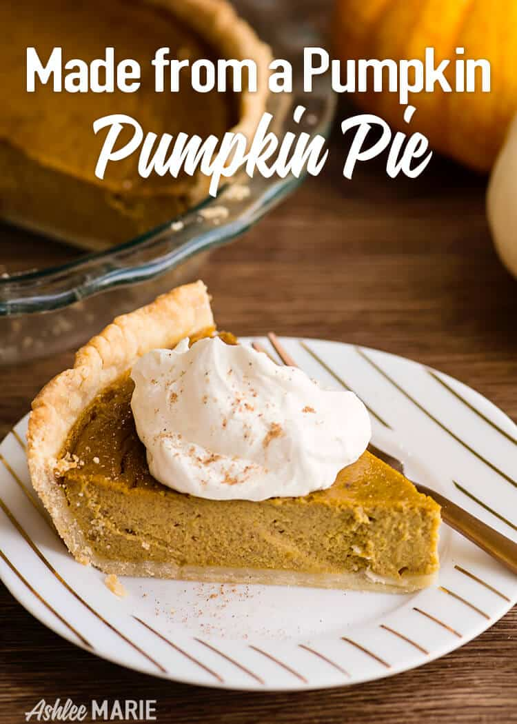 made from a pumpkin - pumpkin pie recipe