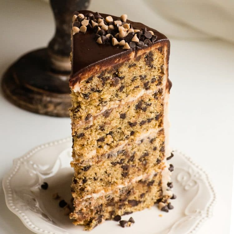 cinnamon chocolate chip cake