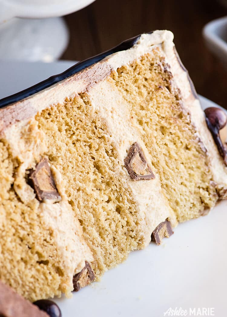 soft peanut butter cake with peanut butter mousse and frosting