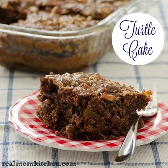 Turtle Cake and 21+ other amazing caramel recipes